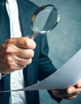 fiscal_penal_proceedings